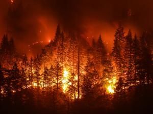 indoor air quality, wild fries, california, hassler
